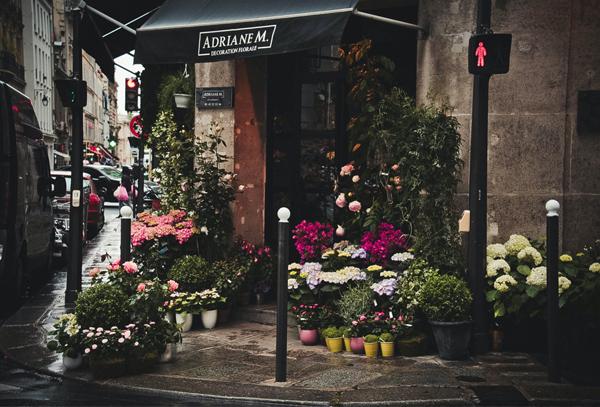 如何开花店,开花店要学些什么知识?花店怎样选址?